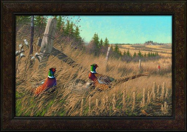 Framed Giclee PF POY Shelterbelt Pheasants-Sieve(15-16)