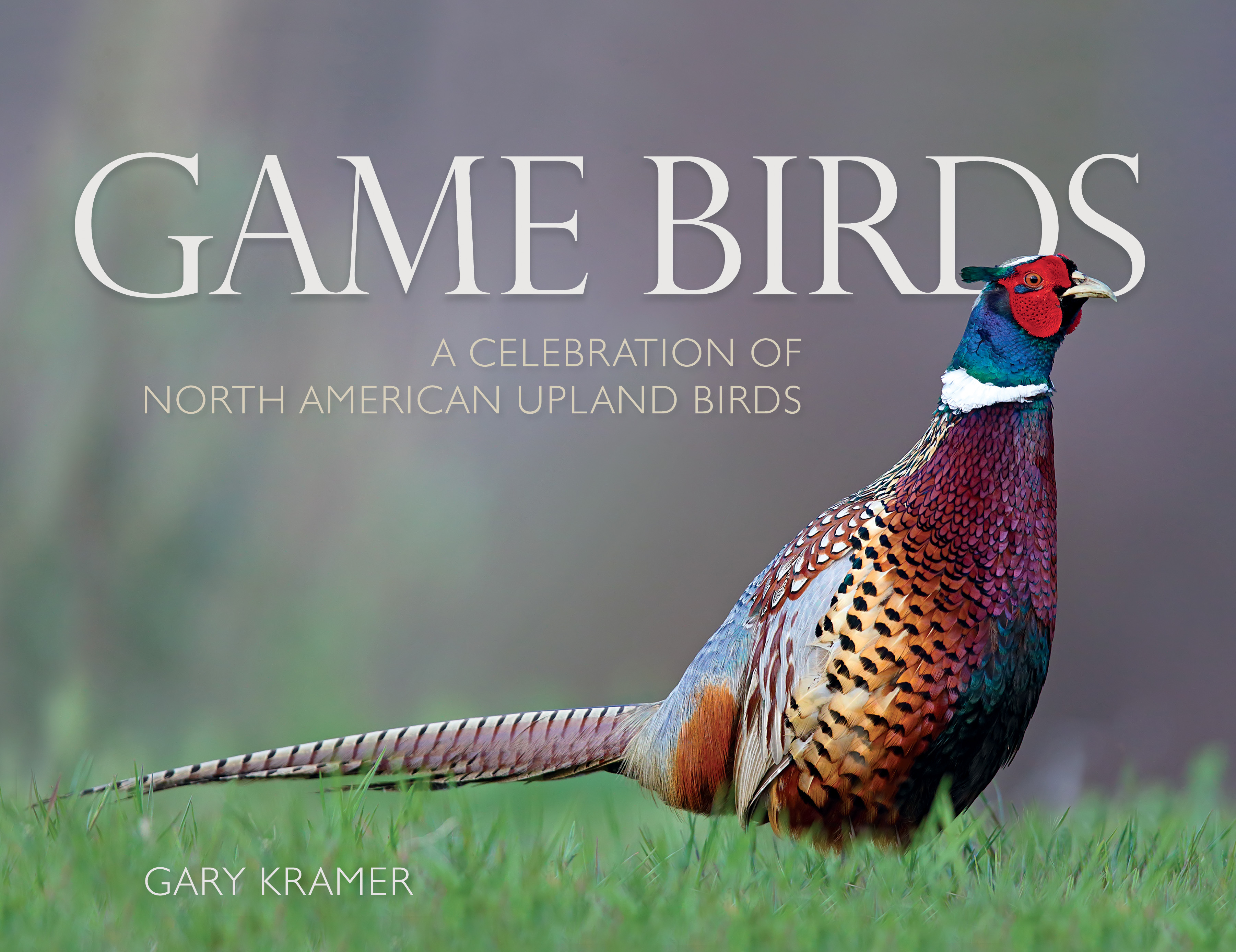 Game Birds Celebration Of North American Birds