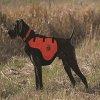 QF Sylmar Dog Body Guard Vest